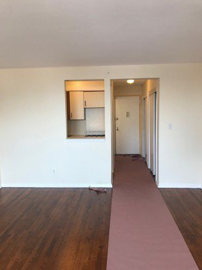 Apartment Booth Street  Queens, NY 11374, MLS-RD1918-5