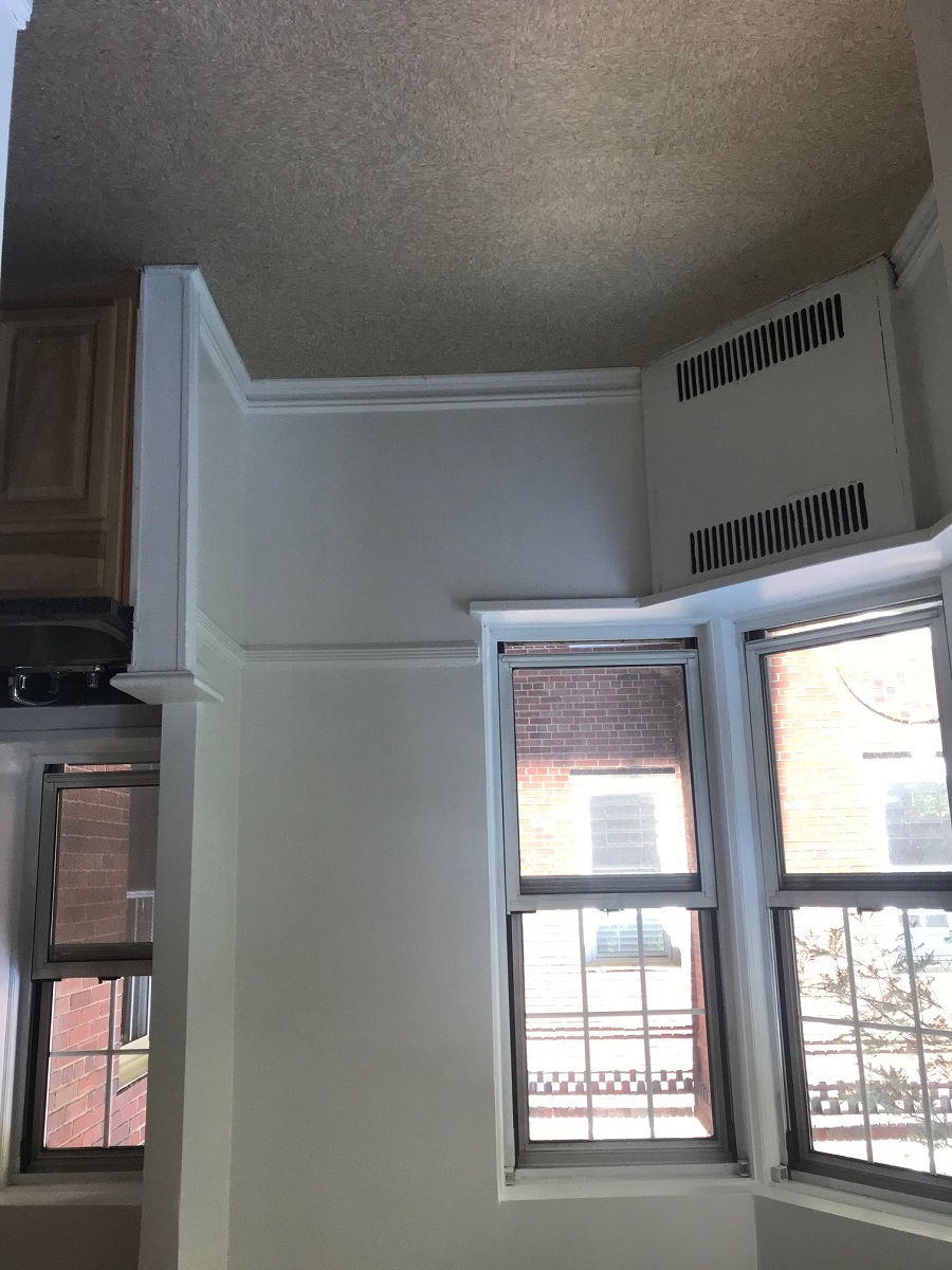 Apartment 108 St  Queens, NY 11375, MLS-RD2219-5