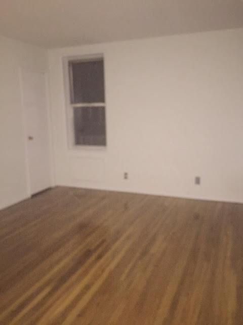 84th Ae  Queens, NY 11465, MLS-RD2221-5