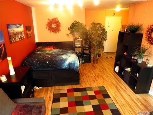 Coop 67th Avenue  Queens, NY 11374, MLS-RD1583-3