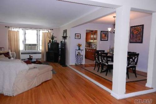 Coop Hoover Ave  Queens, NY 11435, MLS-RD259-2