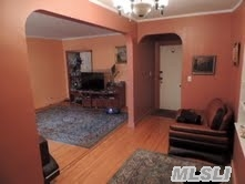 Coop 84th Ave  Queens, NY 11415, MLS-RD079-5